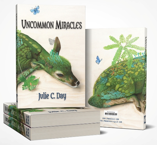 Uncommon Miracles